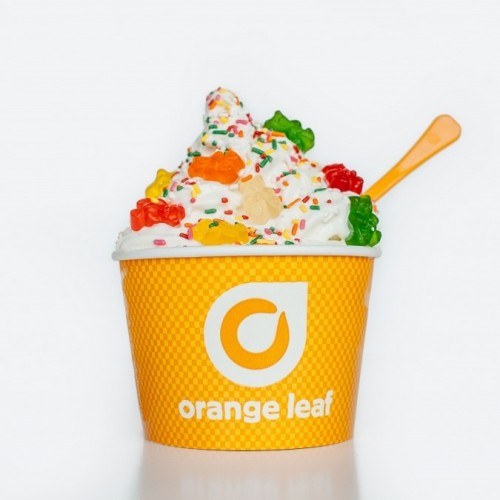 US frozen yogurt concept Orange Leaf Frozen Yogurt has launched in the UAE