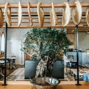 Lebanese organic café opens at Dubai's World Trade Centre
