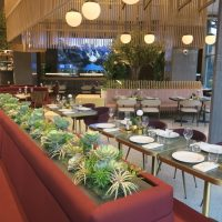 Gastronomy Uncovered: The Galliard